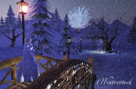 Winterfair with snow3